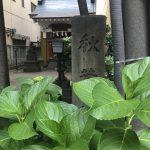 東京新宿の秋葉神社で、火の神様のスピリチュアルなエネルギーに触れてきました。