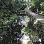 等々力渓谷〜水遊びもできる都内唯一の渓谷で癒しのひと時を。